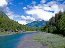 alaska-wilderness-by-a-river-or-stream-with-green-and-blue-mountains-in-background
